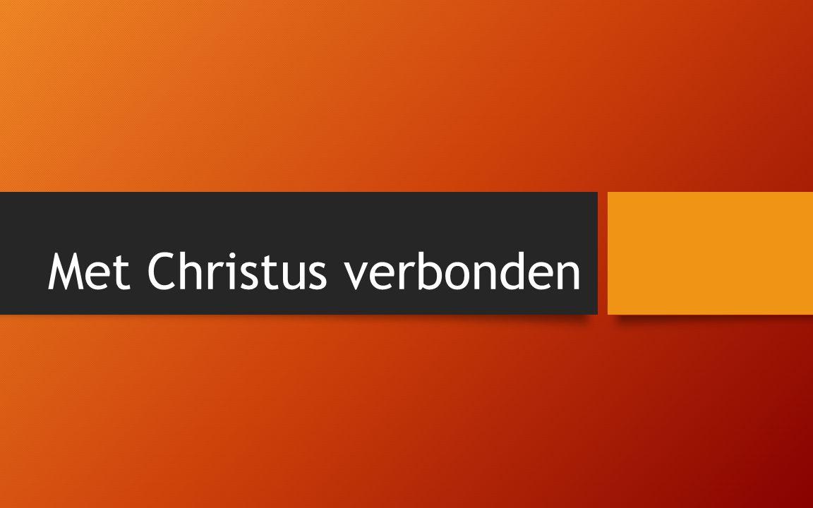 Met Christus verbonden