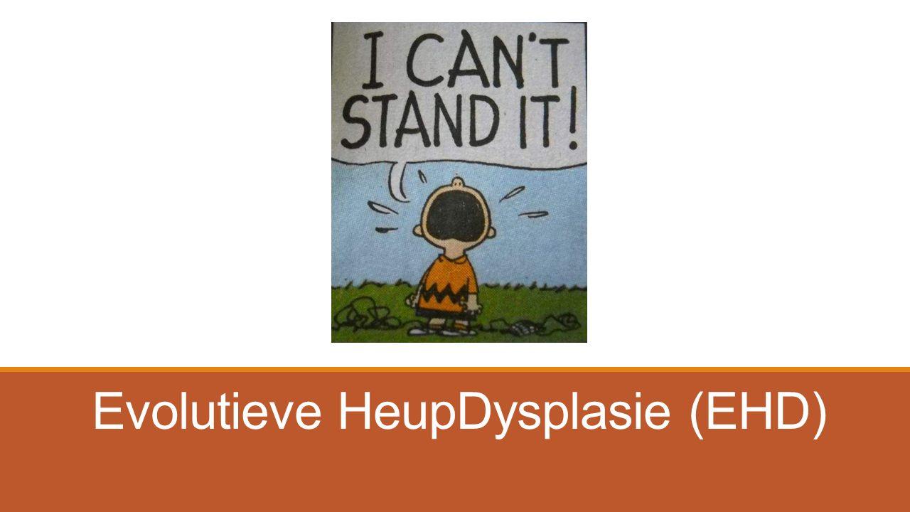 Evolutieve HeupDysplasie (EHD)