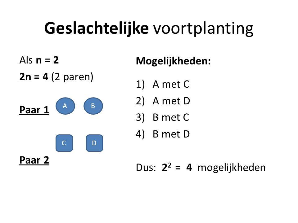 Geslachtelijke voortplanting Als n = 2 2n = 4 (2 paren) Paar 1 Paar 2 Mogelijkheden: 1)A met C 2)A met D 3)B met C 4)B met D Dus: 2 2 = 4 mogelijkheden A CD B