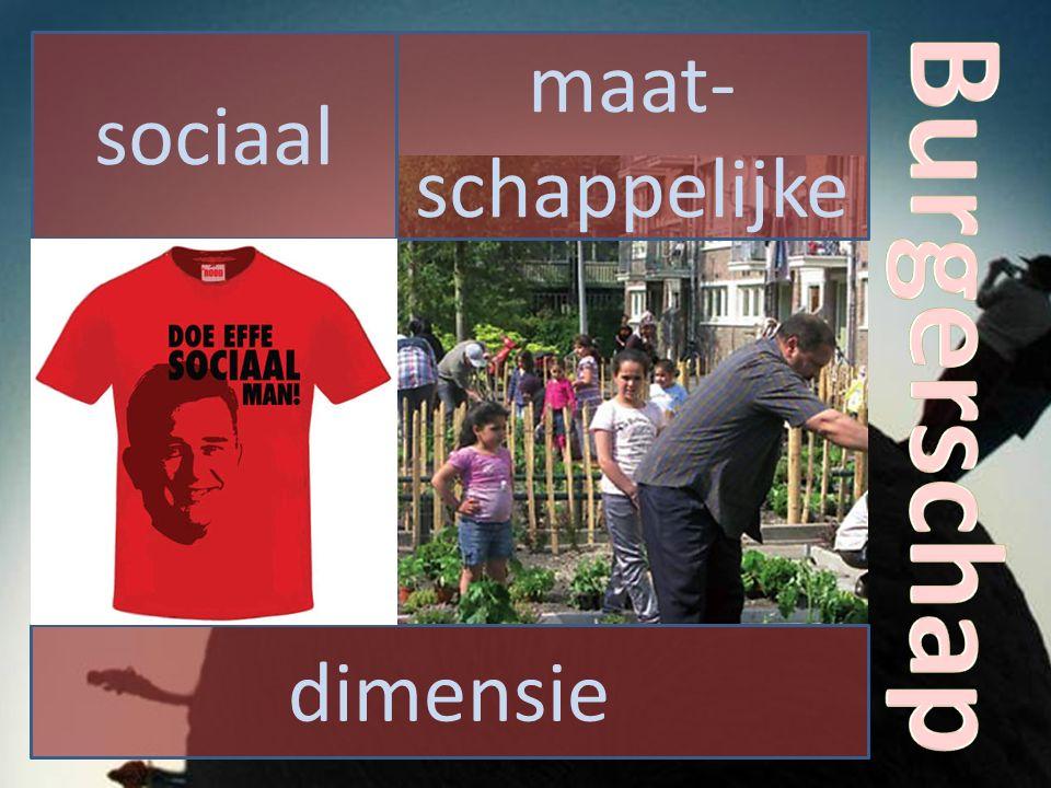 sociaal dimensie maat- schappelijke