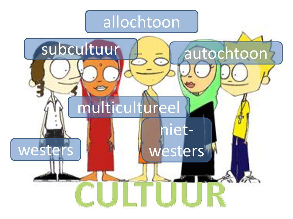 subcultuur westers niet- westers multicultureel autochtoon allochtoon