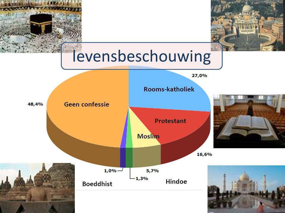 2009-20107 Rooms-katholiek Protestant Geen confessie Boeddhist Moslim Hindoe levensbeschouwing
