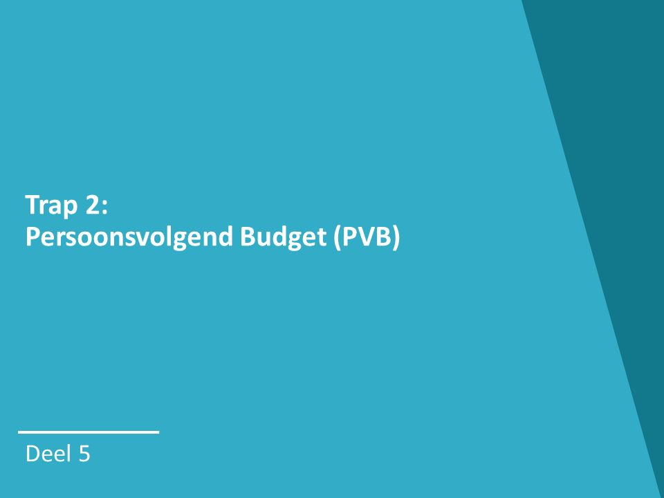 Trap 2: Persoonsvolgend Budget (PVB) Deel 5