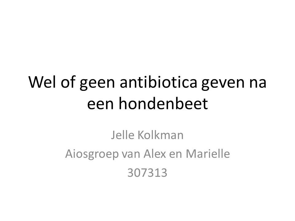 Wel of geen antibiotica geven na een hondenbeet Jelle Kolkman Aiosgroep van Alex en Marielle 307313