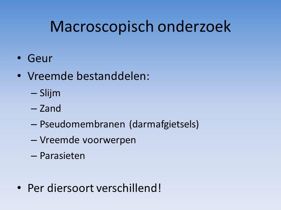 Macroscopisch onderzoek Geur Vreemde bestanddelen: – Slijm – Zand – Pseudomembranen (darmafgietsels) – Vreemde voorwerpen – Parasieten Per diersoort verschillend!