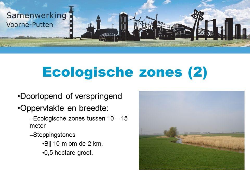 Ecologische zones (2) Doorlopend of verspringend Oppervlakte en breedte: –Ecologische zones tussen 10 – 15 meter –Steppingstones Bij 10 m om de 2 km.