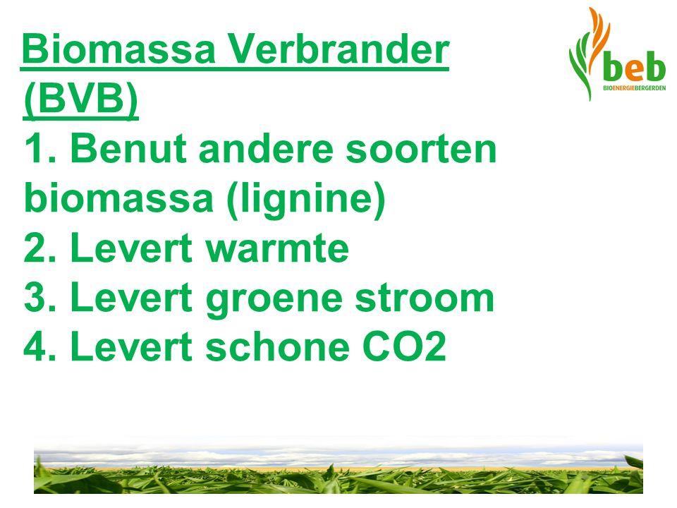 Biomassa Verbrander (BVB) 1. Benut andere soorten biomassa (lignine) 2. Levert warmte 3. Levert groene stroom 4. Levert schone CO2