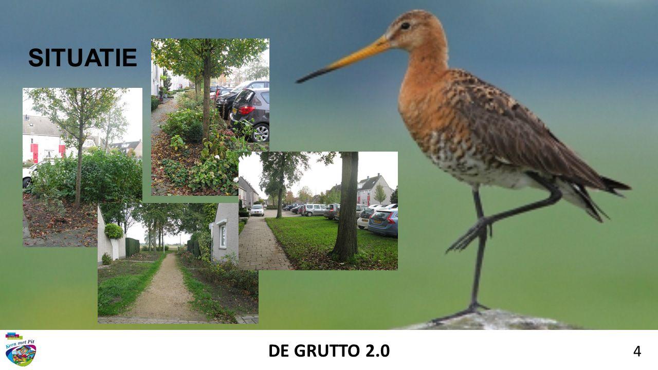 DE GRUTTO 2.0 4 SITUATIE