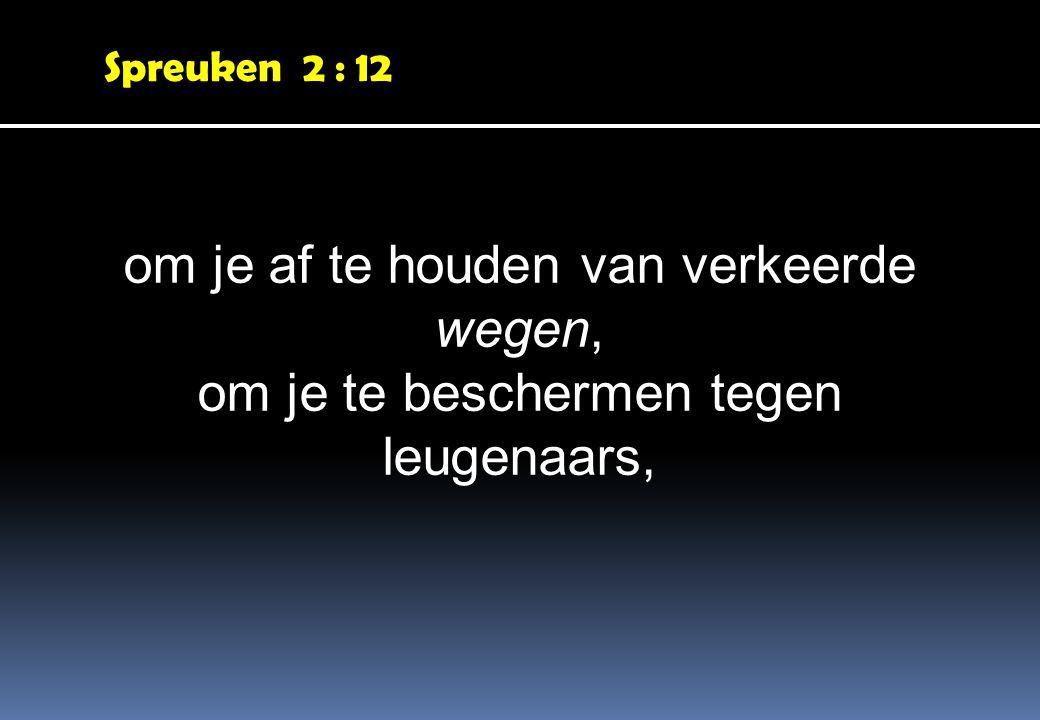 Spreuken 2 : 12 om je af te houden van verkeerde wegen, om je te beschermen tegen leugenaars,