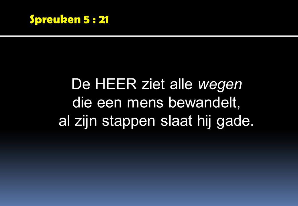 Spreuken 5 : 21 De HEER ziet alle wegen die een mens bewandelt, al zijn stappen slaat hij gade.