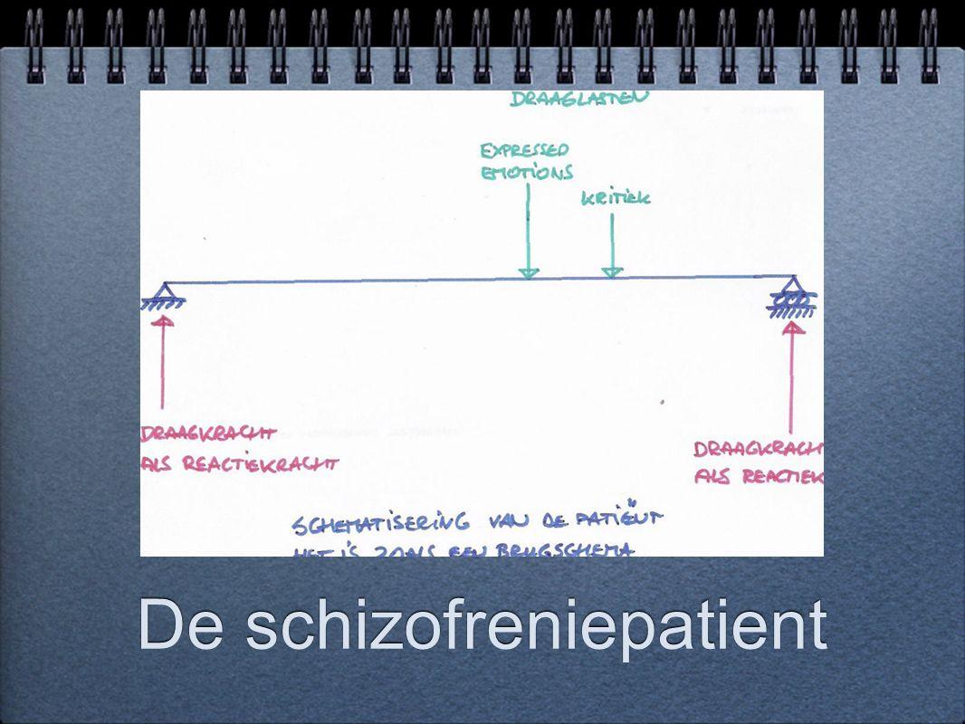 De schizofreniepatient