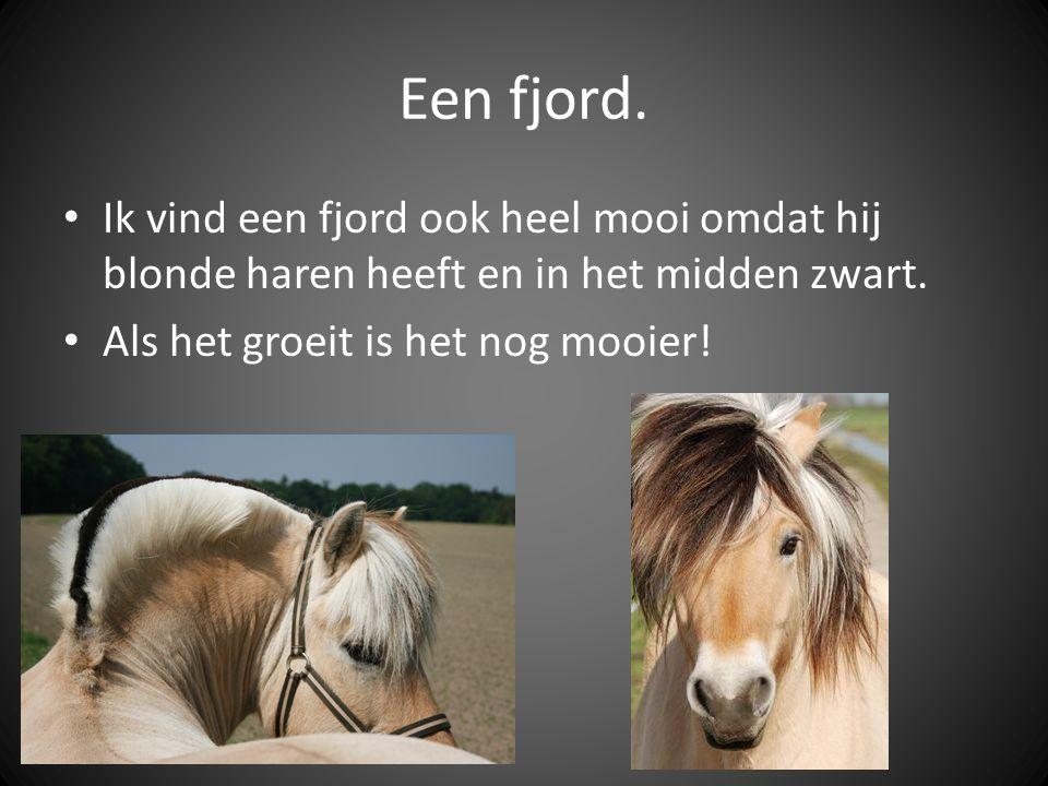 Een fjord. Ik vind een fjord ook heel mooi omdat hij blonde haren heeft en in het midden zwart.