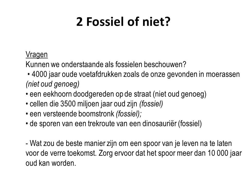 Vragen Kunnen we onderstaande als fossielen beschouwen? 4000 jaar oude voetafdrukken zoals de onze gevonden in moerassen (niet oud genoeg) een eekhoor