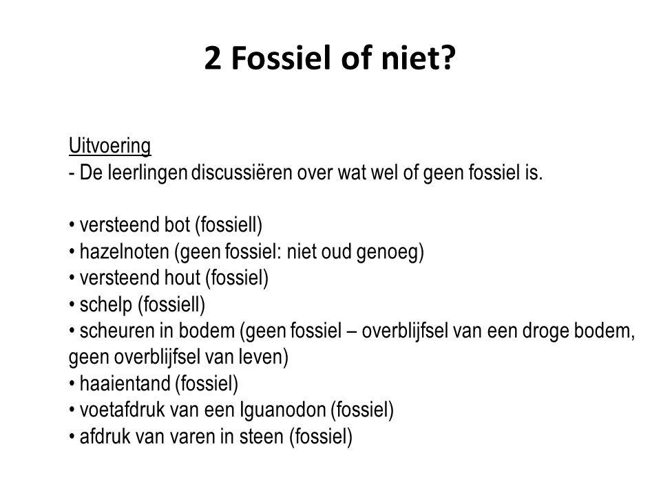 2 Fossiel of niet? Uitvoering - De leerlingen discussiëren over wat wel of geen fossiel is. versteend bot (fossiell) hazelnoten (geen fossiel: niet ou
