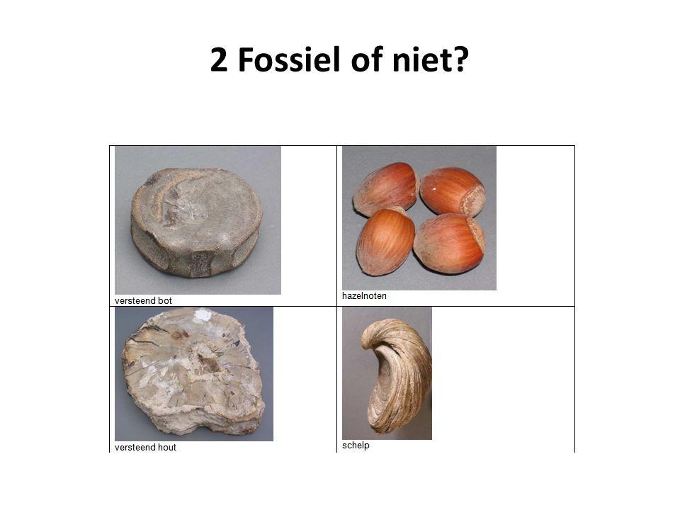 2 Fossiel of niet