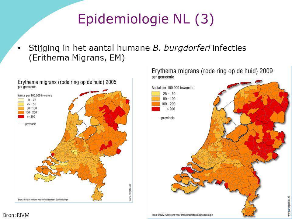 Epidemiologie NL (3) Stijging in het aantal humane B.