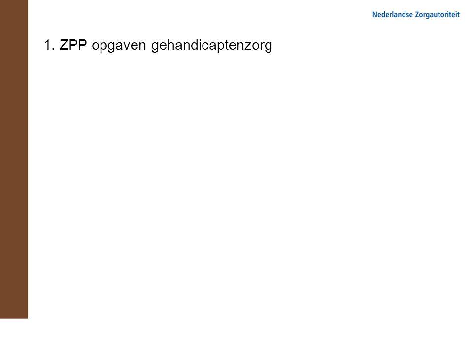 1. ZPP opgaven gehandicaptenzorg