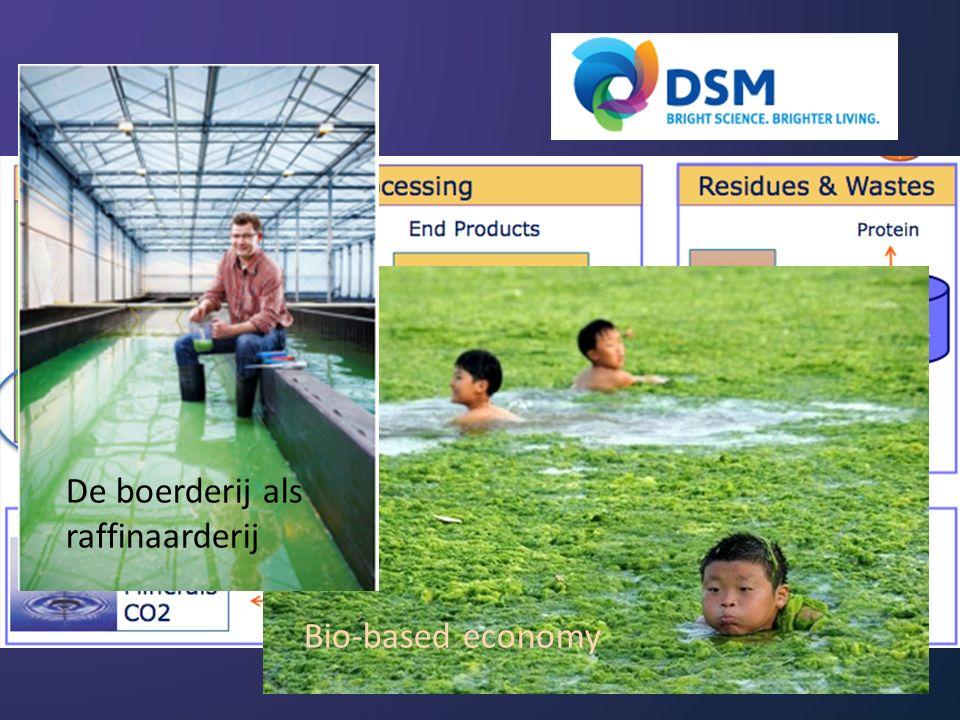 Bio-based economy De boerderij als raffinaarderij