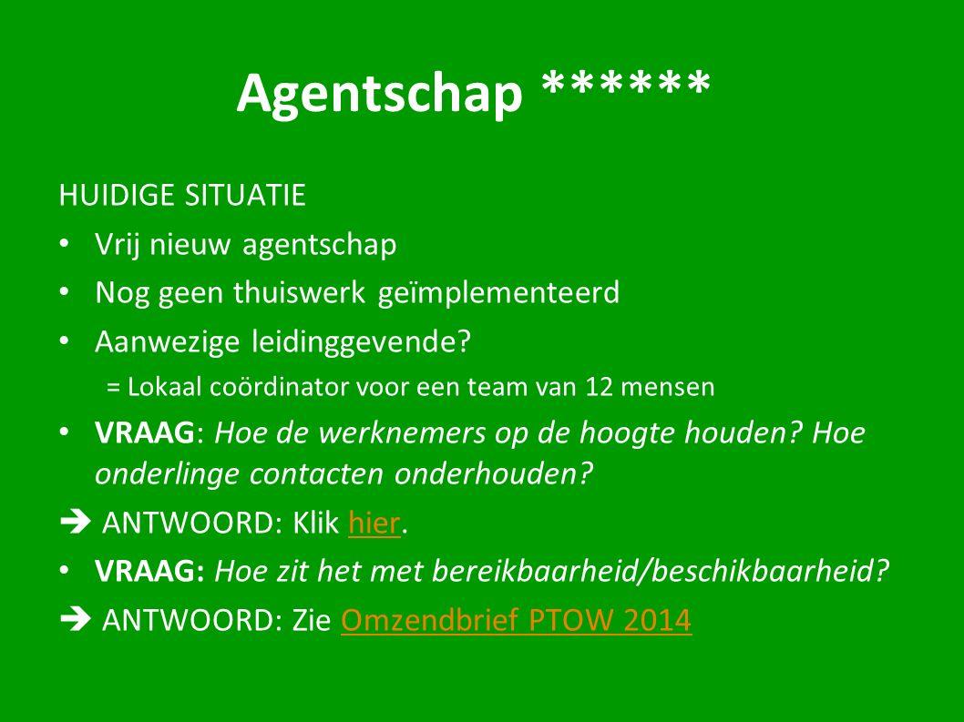 Agentschap ****** HUIDIGE SITUATIE Vrij nieuw agentschap Nog geen thuiswerk geïmplementeerd Aanwezige leidinggevende.
