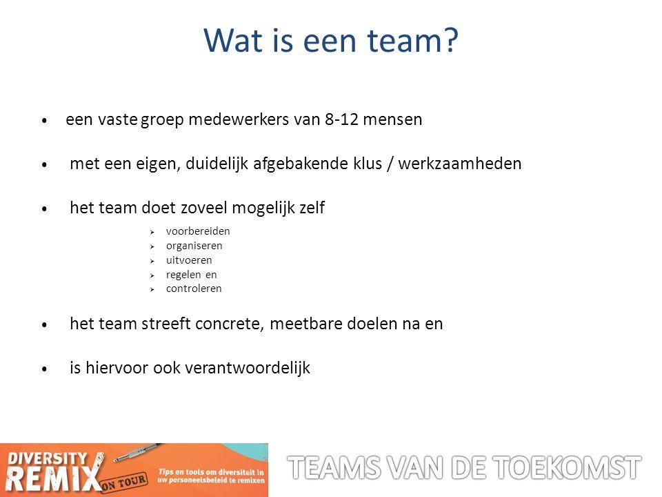 Wat is een team.