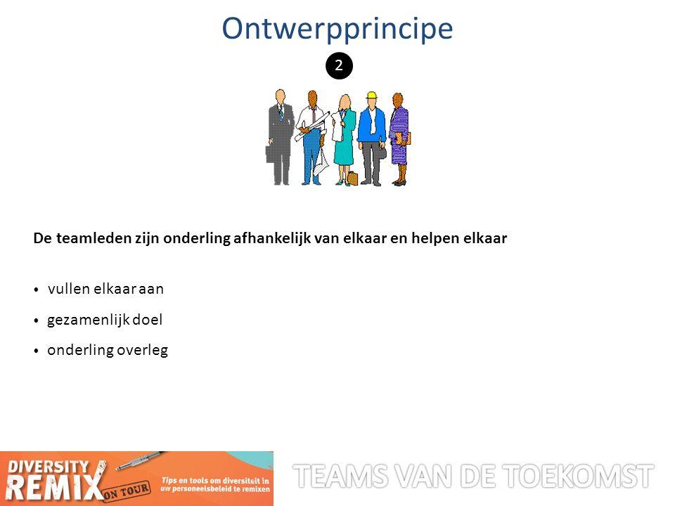 De teamleden zijn onderling afhankelijk van elkaar en helpen elkaar vullen elkaar aan gezamenlijk doel onderling overleg Ontwerpprincipe 2