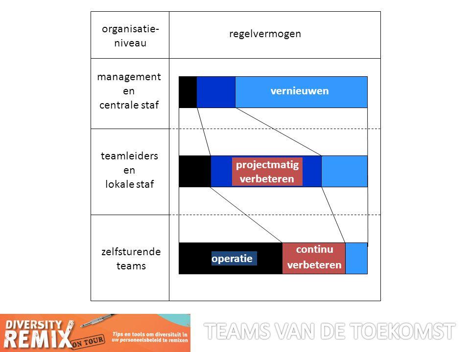 regelvermogen organisatie- niveau management en centrale staf teamleiders en lokale staf zelfsturende teams vernieuwen projectmatig verbeteren operatie continu verbeteren