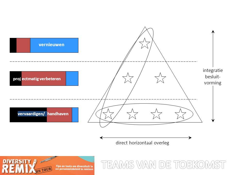 ectmatig verbeteren integratie besluit- vorming direct horizontaal overleg vernieuwen vervaardigen/handhaven proj