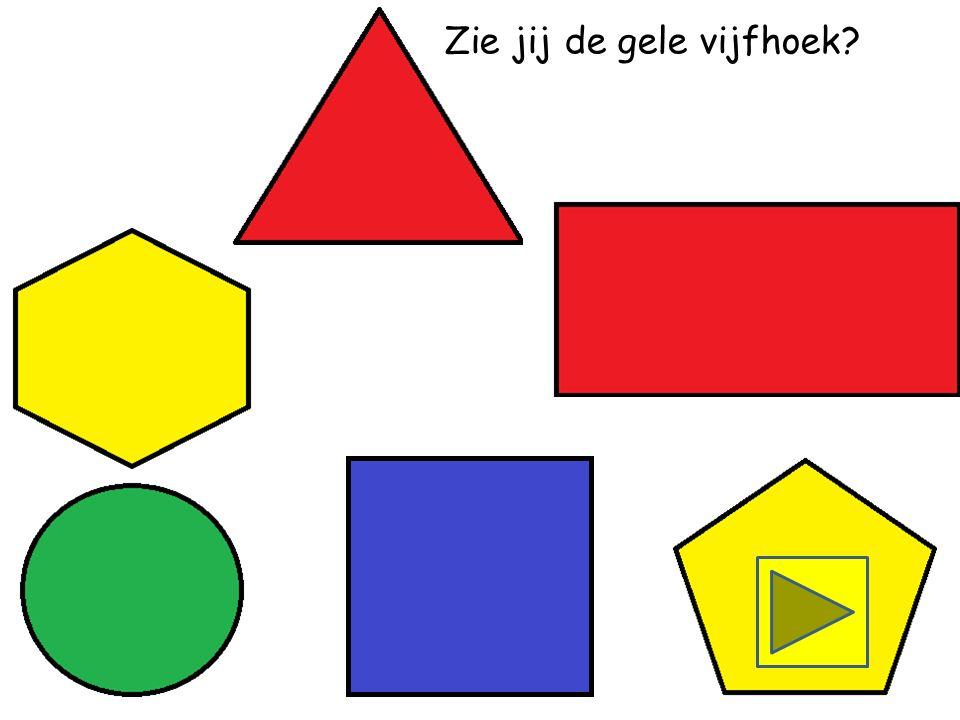 Zie jij de blauwe vijfhoek