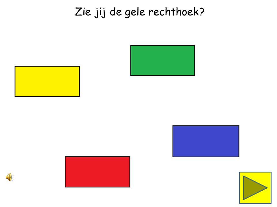 Zie jij de rode rechthoek