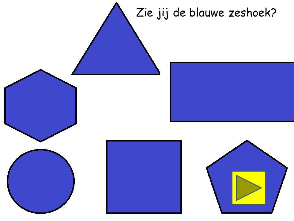 Zie jij de blauwe driehoek