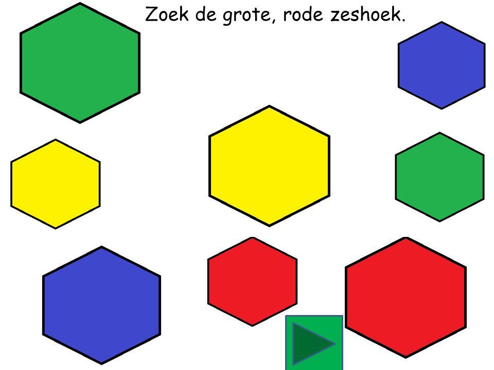 Zoek de grote, blauwe zeshoek.
