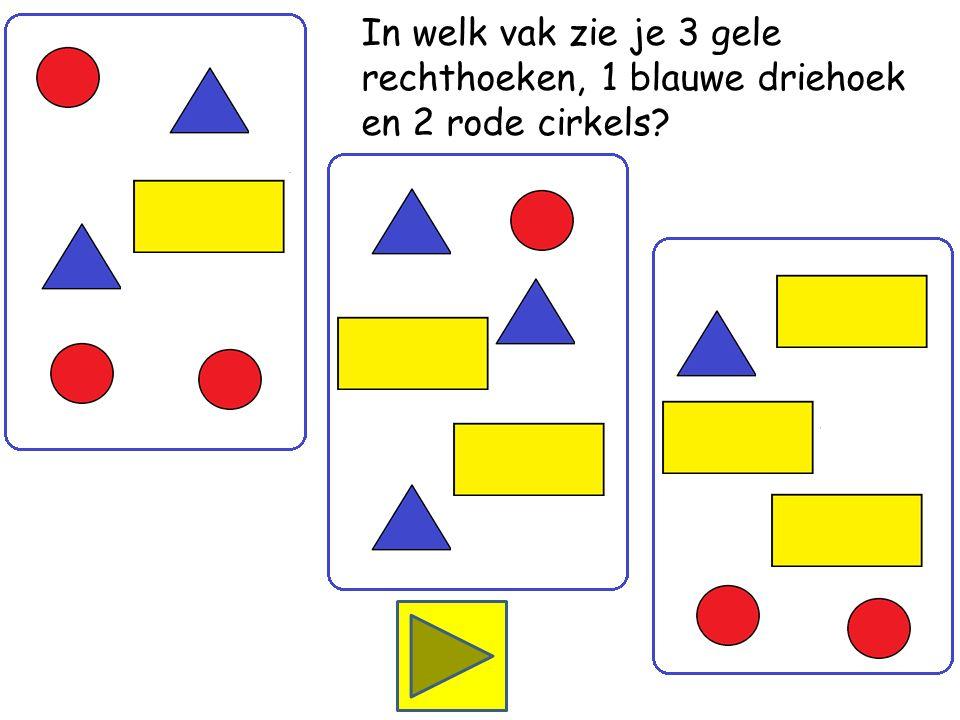 In welk vak zie je 1 gele rechthoek, 2 blauwe driehoeken en 3 rode cirkels