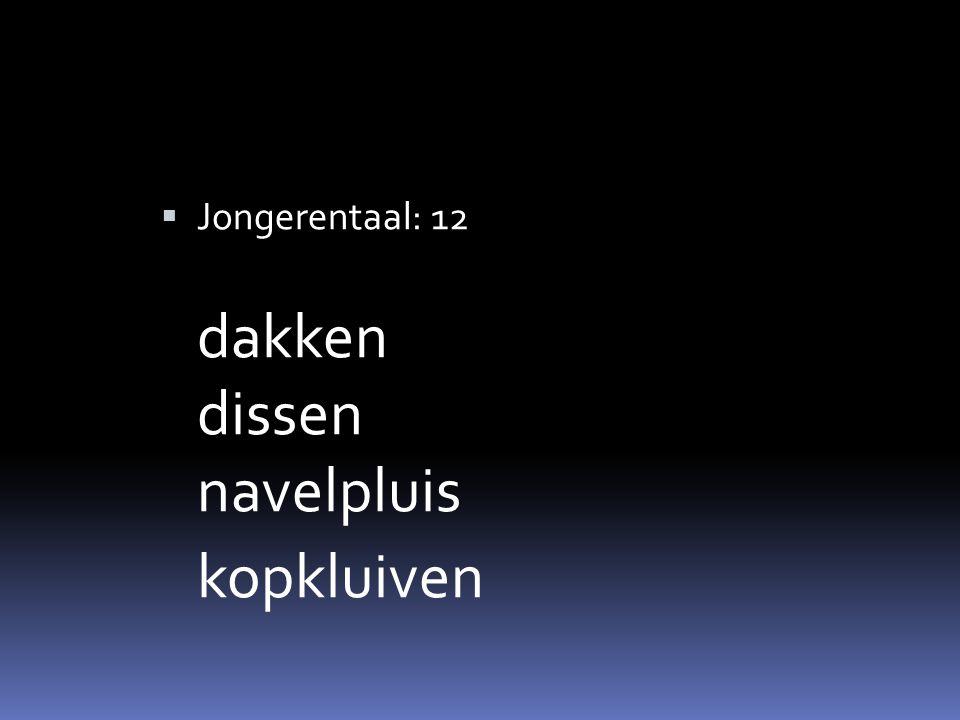  Jongerentaal: 12 dakken dissen navelpluis kopkluiven