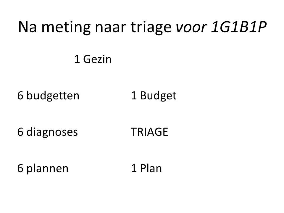 Na meting naar triage voor 1G1B1P 1 Gezin 6 budgetten1 Budget 6 diagnoses TRIAGE 6 plannen1 Plan
