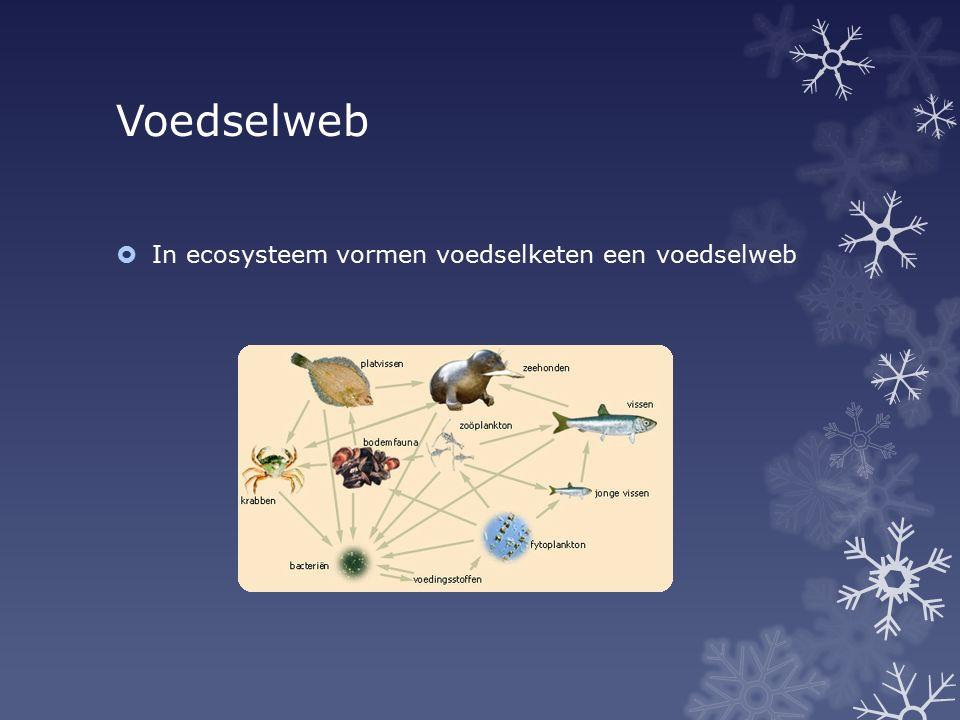  In ecosysteem vormen voedselketen een voedselweb