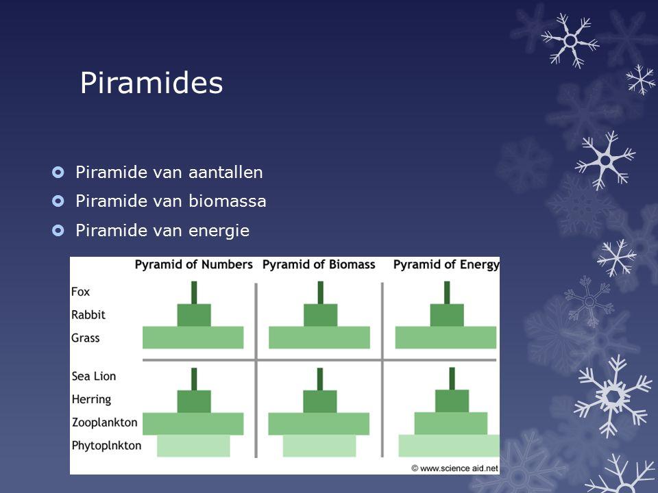 Piramides  Piramide van aantallen  Piramide van biomassa  Piramide van energie