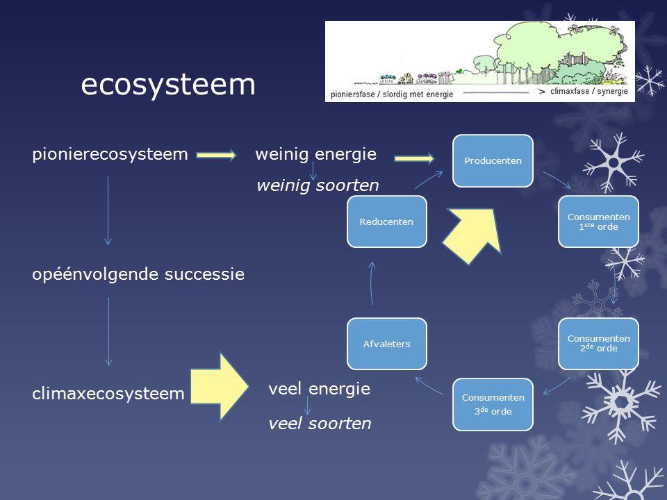 ecosysteem Producenten Consumenten 1 ste orde Consumenten 2 de orde Consumenten 3 de orde AfvaletersReducenten pionierecosysteem opéénvolgende success