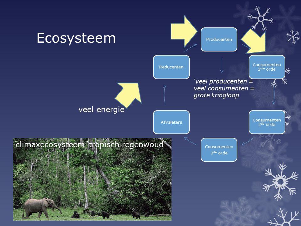 Ecosysteem climaxecosysteem 'tropisch regenwoud Producenten Consumenten 1 ste orde Consumenten 2 de orde Consumenten 3 de orde AfvaletersReducenten ve