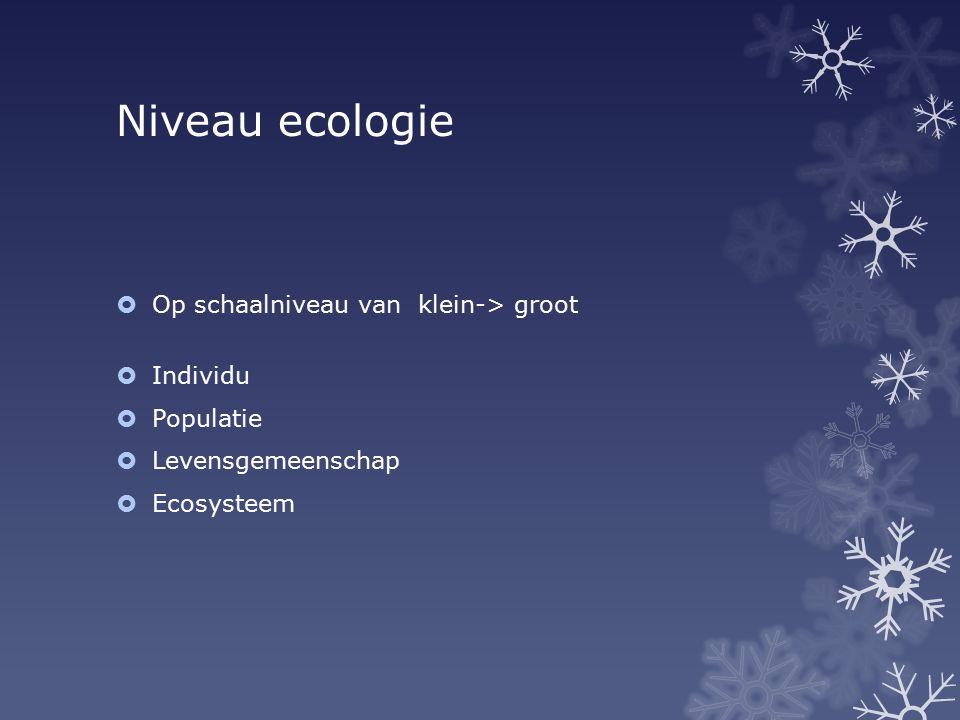 Niveau ecologie  Op schaalniveau van klein-> groot  Individu  Populatie  Levensgemeenschap  Ecosysteem