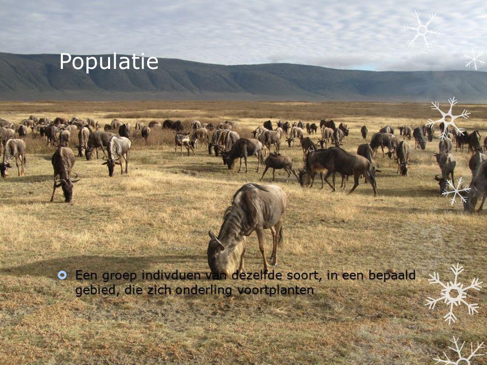 Populatie  Een groep indivduen van dezelfde soort, in een bepaald gebied, die zich onderling voortplanten