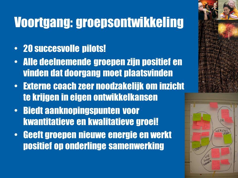 Voortgang: groepsontwikkeling 20 succesvolle pilots.