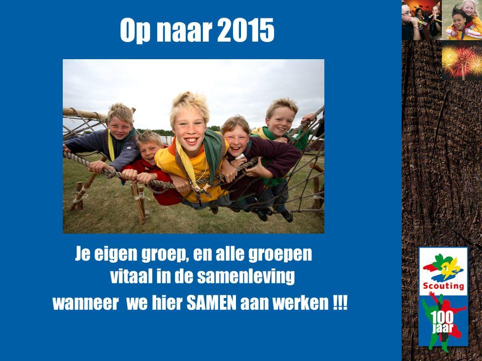 Op naar 2015 Je eigen groep, en alle groepen vitaal in de samenleving wanneer we hier SAMEN aan werken !!!