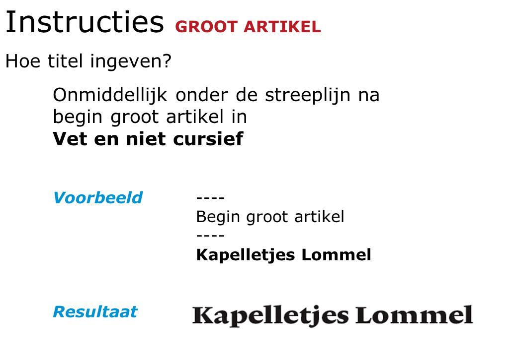 Instructies GROOT ARTIKEL Hoe titel ingeven.