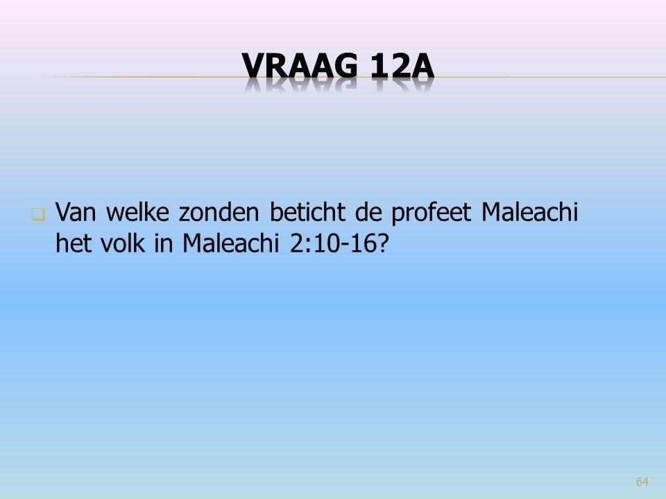  Van welke zonden beticht de profeet Maleachi het volk in Maleachi 2:10-16? 64