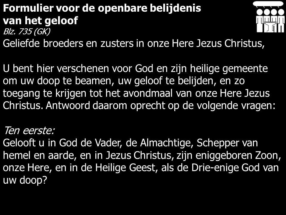 Formulier voor de openbare belijdenis van het geloof Blz.