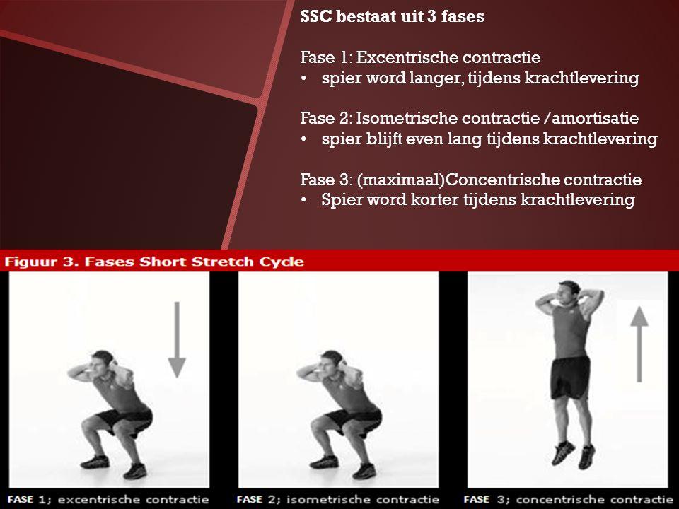 SSC bestaat uit 3 fases Fase 1: Excentrische contractie spier word langer, tijdens krachtlevering Fase 2: Isometrische contractie /amortisatie spier b