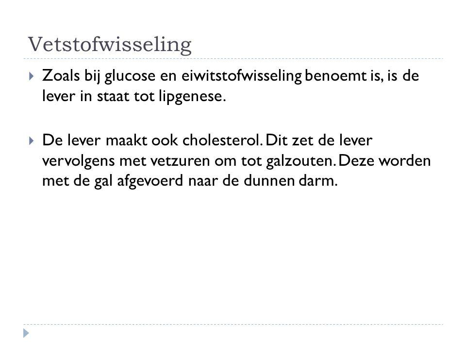 Vetstofwisseling  Zoals bij glucose en eiwitstofwisseling benoemt is, is de lever in staat tot lipgenese.  De lever maakt ook cholesterol. Dit zet d