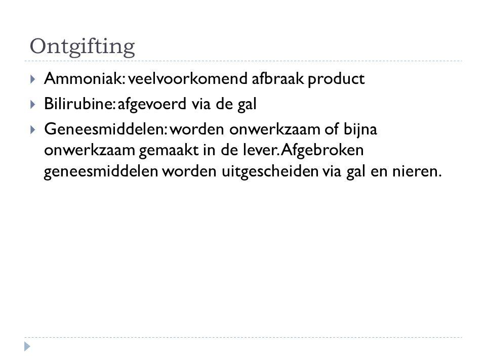 Ontgifting  Ammoniak: veelvoorkomend afbraak product  Bilirubine: afgevoerd via de gal  Geneesmiddelen: worden onwerkzaam of bijna onwerkzaam gemaa