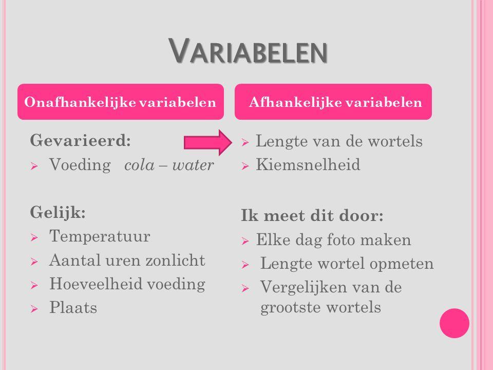 V ARIABELEN V ARIABELEN Gevarieerd:  Voeding cola – water Gelijk:  Temperatuur  Aantal uren zonlicht  Hoeveelheid voeding  Plaats  Lengte van de