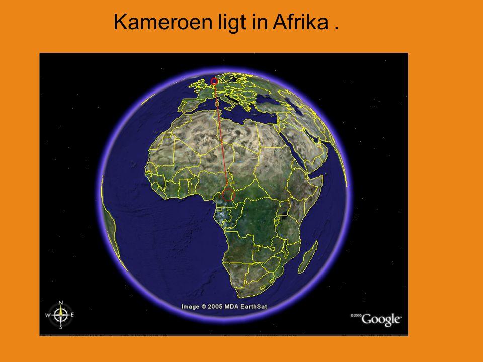 Kameroen ligt in Afrika.